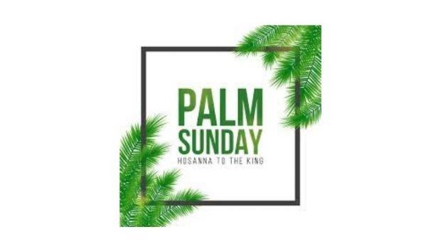 Palm Sunday graphic